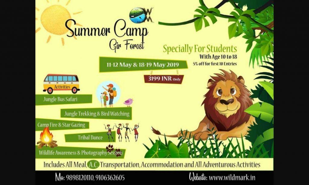 Summer camp Gir forest