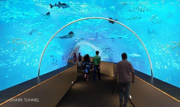 Science City Aquarium, Ahmedabad