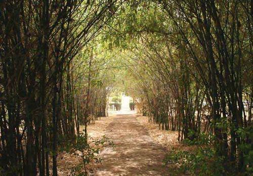 Indroda Park